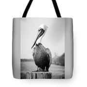 Posing Pelican - Black And White Tote Bag