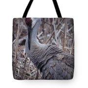 Posing Sandhill Crane Tote Bag