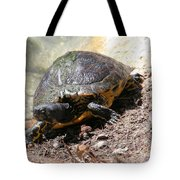 Possible Cooter Turtle Tote Bag