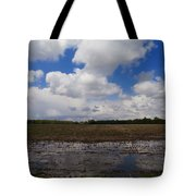 Post Storm Reflections Tote Bag