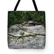 Post Storm Tote Bag
