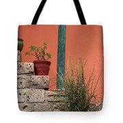 Pot Plants Tote Bag