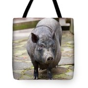 Potbelly Pig Standing Tote Bag
