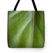 Pothos Detail Tote Bag