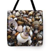Potomac Shellscape Tote Bag