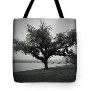 Potomac Tree Tote Bag