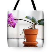 Potted Pink Orchid Tote Bag
