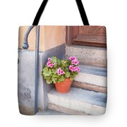 Potted Plant Front Of House Tote Bag