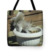 Potted Squirrel Tote Bag