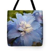 Powder Blue Beauty Tote Bag