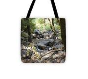 pr 135 - A Very Dry Stream  Tote Bag