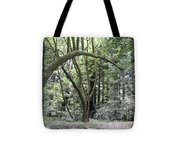 pr 136 - Bowed Tree Tote Bag