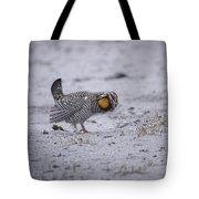 Prairie Chicken 2013-2 Tote Bag