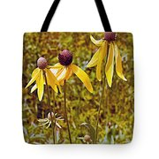 Prairie Coneflowers In Pipestone National Monument-minnesota  Tote Bag