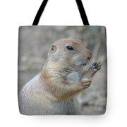 Prairie Dog Cleaning His Teeth Tote Bag