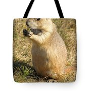 Prairie Dog Feeding On The Meadows At The Devil's Tower Tote Bag