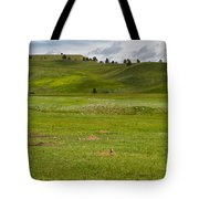 Prairie Dog Town Tote Bag