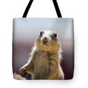 Prairie Dog With Buck Teeth Tote Bag