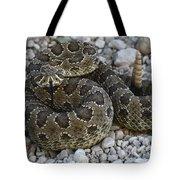 Prairie Rattlesnake South Dakota Badlands Tote Bag