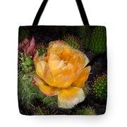 Prairie Rose II Tote Bag