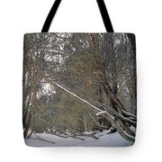 Prairie Winter 2 Tote Bag