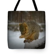 Prayer Time Tote Bag