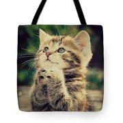 Praying Cat Tote Bag