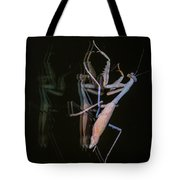 Praying Mantis 2 Tote Bag
