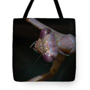 Praying Mantis 3 Tote Bag