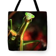 Praying Mantis Portrait Tote Bag