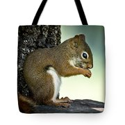 Praying Squirrel Tote Bag