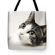 Precious Kitty Tote Bag by Andee Design