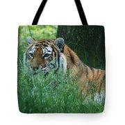 Predator In The Grass Tote Bag