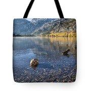 Preening Ducks At Silver Lake Tote Bag