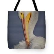 Preening Feather Fluff Beauty  Tote Bag