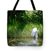 Preening In Tranquil Sunlight Tote Bag
