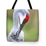 Preening Sandhill Crane Closeup Tote Bag