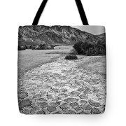 Prehistoric - Clark Dry Lake Located In Anza Borrego Desert State Park In California. Tote Bag