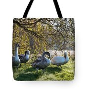 Preparing For The Day Tote Bag