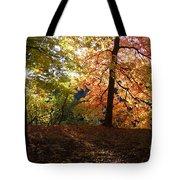 Preserve Trails In Fall Three Tote Bag