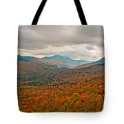 Presidential Colors Tote Bag by Brenda Jacobs