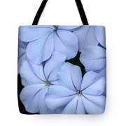 Prettiest Plumbago Tote Bag