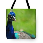 Pretty As A Peacock Tote Bag by Lori Tambakis