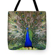 Pretty As A Peacock Tote Bag