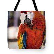 Pretty Bird 2 Tote Bag
