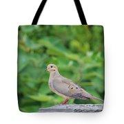 Pretty Dove Tote Bag