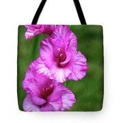 Pretty Gladiolus Tote Bag