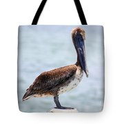 Pretty Gulf Pelican Tote Bag