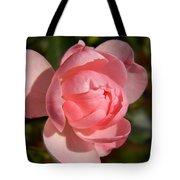 Pretty In Pink Rose Bud Tote Bag
