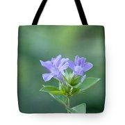 Pretty In Purple Tote Bag